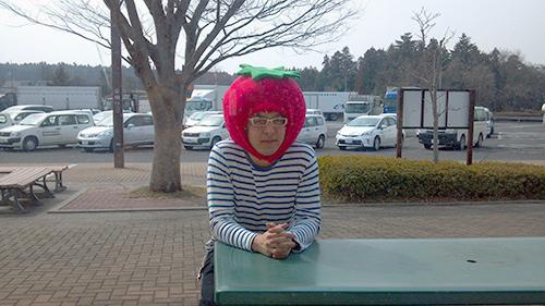 トマトの妖精2