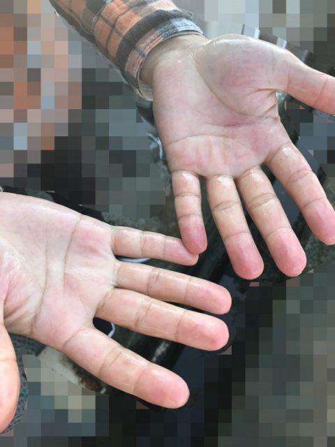 オリーブオイル石鹸で手が綺麗